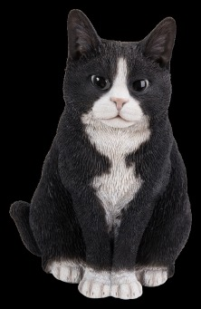 Sitting Cat - Black & White.tif