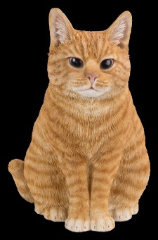 Sitting Cat - Ginger.tif