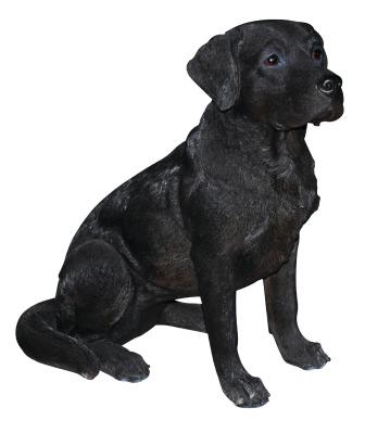 XRL-BLAB-A Black Labrador A1 H54cm.tif