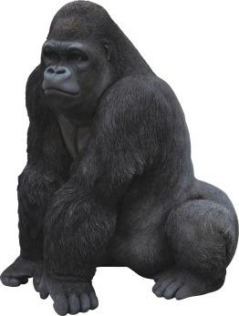 XRL-GRLA-A XRL-GRLA-B Gorilla.tif