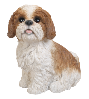 XRL-SZ12-B Sitting Shih-Tzu Brown White B1